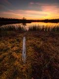 Hermosa vista en el lago del pantano cerca de una pista de senderismo durante una puesta del sol asombrosa Imagen de archivo