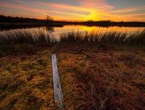 Hermosa vista en el lago del pantano cerca de una pista de senderismo durante una puesta del sol asombrosa Fotos de archivo