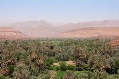 Hermosa vista sobre el oasis de Tinghir en Marruecos Foto de archivo