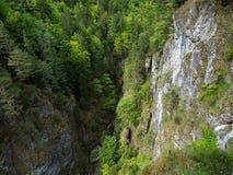 Hermosa vista, valle, garganta, naturaleza pura, Tatras del oeste, Eslovaquia Fotos de archivo libres de regalías