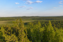 Hermosas vistas del bosque en el cielo azul del fondo Imágenes de archivo libres de regalías