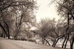 Hermosas vistas del bosque ruso del invierno en la nieve en los días escarchados de la puesta del sol Árboles cubiertos en helada Fotos de archivo libres de regalías