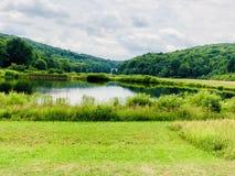 Hermosas vistas del verano del parque de estado de Sunnybrook imagenes de archivo