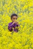 Hermoso en amarillo Foto de archivo libre de regalías