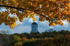 Hermoso, naturaleza brillante colorida del otoño en el parque con los árboles Fotos de archivo