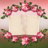 Hermoso pintado subió con los marcos para la enhorabuena Imagenes de archivo