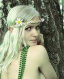 heroína del cuento de hadas de la Duende-muchacha Fotografía de archivo libre de regalías