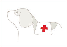 Hero Dog. Illustrated profile of a St. Bernard dog with a blanket and a red cross Royalty Free Stock Image