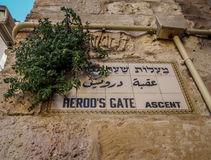 Herod's Gate ascent name sign in Jerusalem, Israel Royalty Free Stock Photo