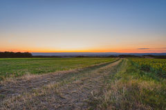 Summer evening above the fields in south france Royalty Free Stock Images
