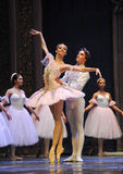 The heroine beauty-The Ballet  Nutcracker Stock Image