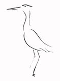 Heron. A simple line illustration of a heron Stock Photo