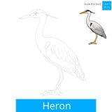 Heron bird learn to draw vector Stock Photo