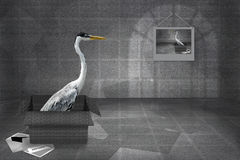 Heron Gray Greeting Card Royalty Free Stock Photography