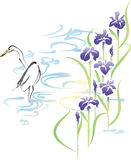 Heron and iris Royalty Free Stock Photos