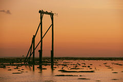 Heron Island`s Gantry at sunset Stock Photography