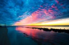 Heron island sunset. Sunset with Herons on rocks stock photos