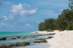 Heron Island Stock Photography