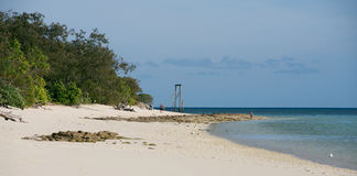 Heron Island Royalty Free Stock Photos