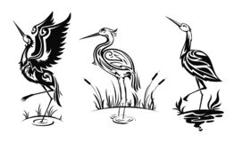 Free Heron Or Wader Birds Vector Icons, Black Herns Stock Photo - 210532970
