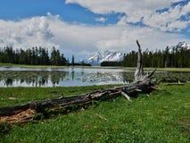 Heron Pond and Swan lake hike in Grand Teton National Park, Wyoming royalty free stock photos