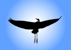 Heron silhouette stock photography