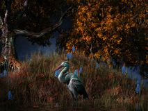 Heron in the swamps royalty free illustration