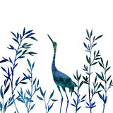 Heron in thicket of bamboo branches with leaves Stock Image
