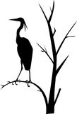 Heron. Vector illustration Stock Photos