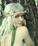 heroína do conto de fadas da Duende-menina Fotografia de Stock Royalty Free