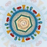 Herpes-Virus Hintergrund ENV 10 Stockbilder