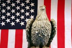 Herr Eagle Stockbild