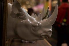 Herr noshörning Royaltyfri Foto
