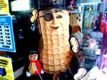 Herr peanut stockfotografie