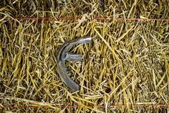 Herradura de acero de la letra F en la paja fotografía de archivo libre de regalías
