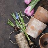 Herramientas de jardín Fotos de archivo libres de regalías