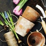 Herramientas de jardín Imágenes de archivo libres de regalías