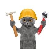 Herramientas de tenencia del constructor del gato en sus patas Imágenes de archivo libres de regalías