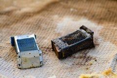 Herramientas del ` s del apicultor, una caja para plantar la abeja del ` s de la madre Imagen de archivo
