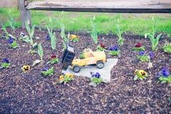 Herramientas miniatura del jardín y de la horticultura en primavera temprana foto de archivo
