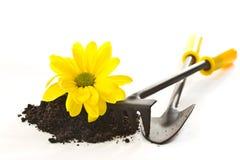 Herramientas para el jardín Imagen de archivo libre de regalías