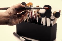 Herramientas para el maquillaje Conjunto de cepillos del maquillaje Foto de archivo