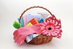 Herramientas para limpiar en la cesta Fotos de archivo