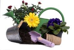 Herramientas que cultivan un huerto 3 Foto de archivo