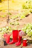 Herramientas que cultivan un huerto al aire libre en jardín Imágenes de archivo libres de regalías