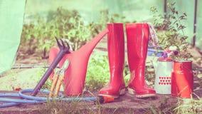 Herramientas que cultivan un huerto al aire libre en jardín Fotografía de archivo libre de regalías