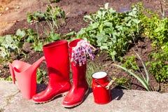 Herramientas que cultivan un huerto al aire libre en jardín Foto de archivo libre de regalías