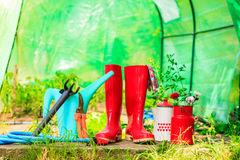Herramientas que cultivan un huerto al aire libre en jardín Fotos de archivo