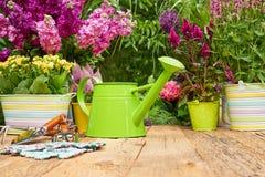 Herramientas que cultivan un huerto al aire libre en la tabla de madera vieja Imagen de archivo libre de regalías