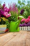 Herramientas que cultivan un huerto al aire libre en la tabla de madera vieja Foto de archivo libre de regalías